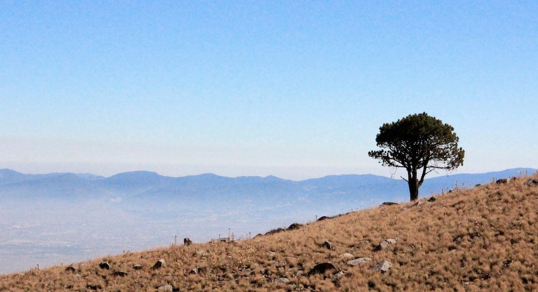 Ciudad de México y sus alrededores - Pasaje subiendo al Nevado de Toluca