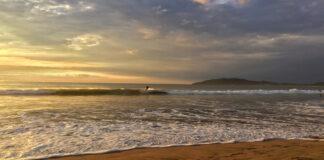 Tamarindo en Costa Rica