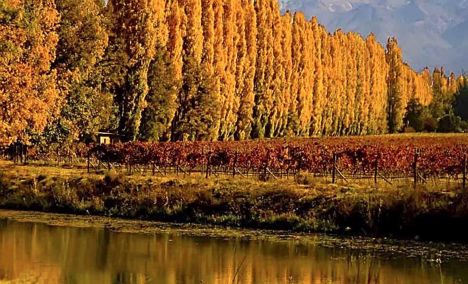 Destinos imperdibles de Argentina según la época del año