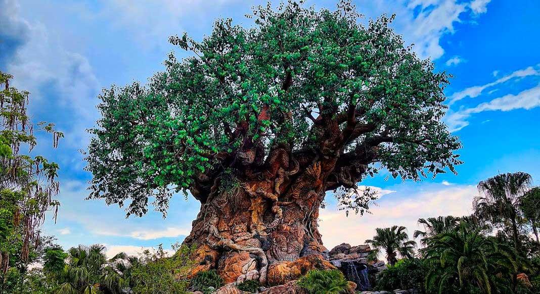 10 consejos para viajar a Disney