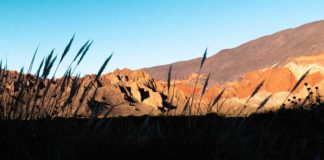 Tips para viajar a Salta