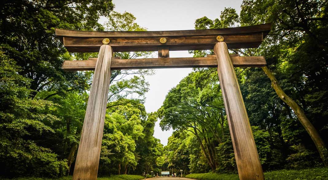 actividades gratuitas para hacer en Tokio