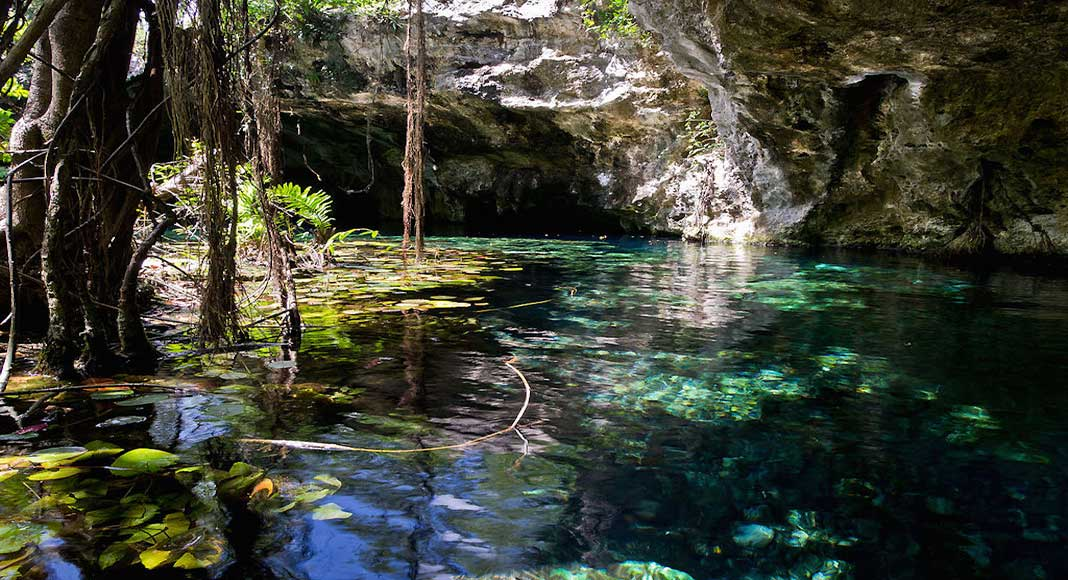 1) Los 5 mejores cenotes en México: El Gran CenoteEl Gran Cenote