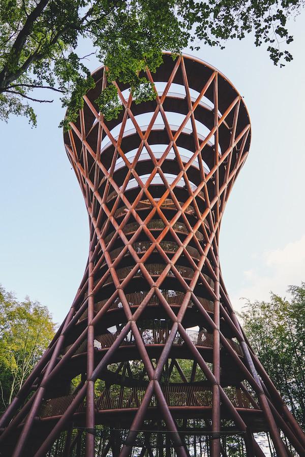 Torre del bosque