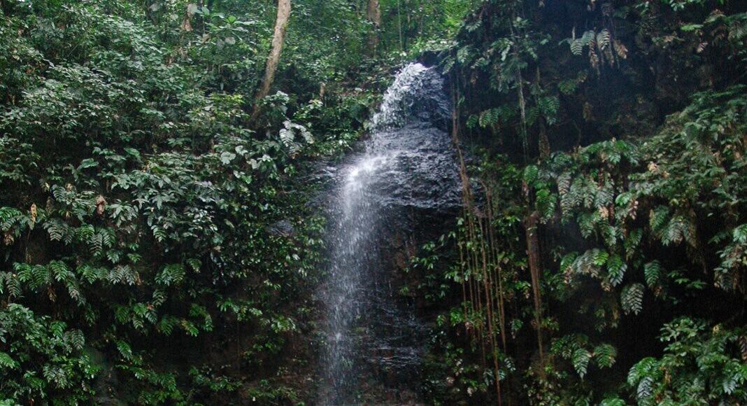 Cascada en Surinam