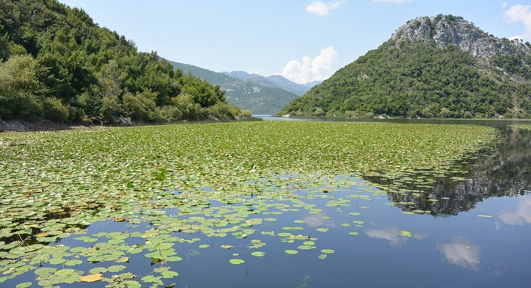 Lago Skadar. Qué ver y hacer en Montenegro