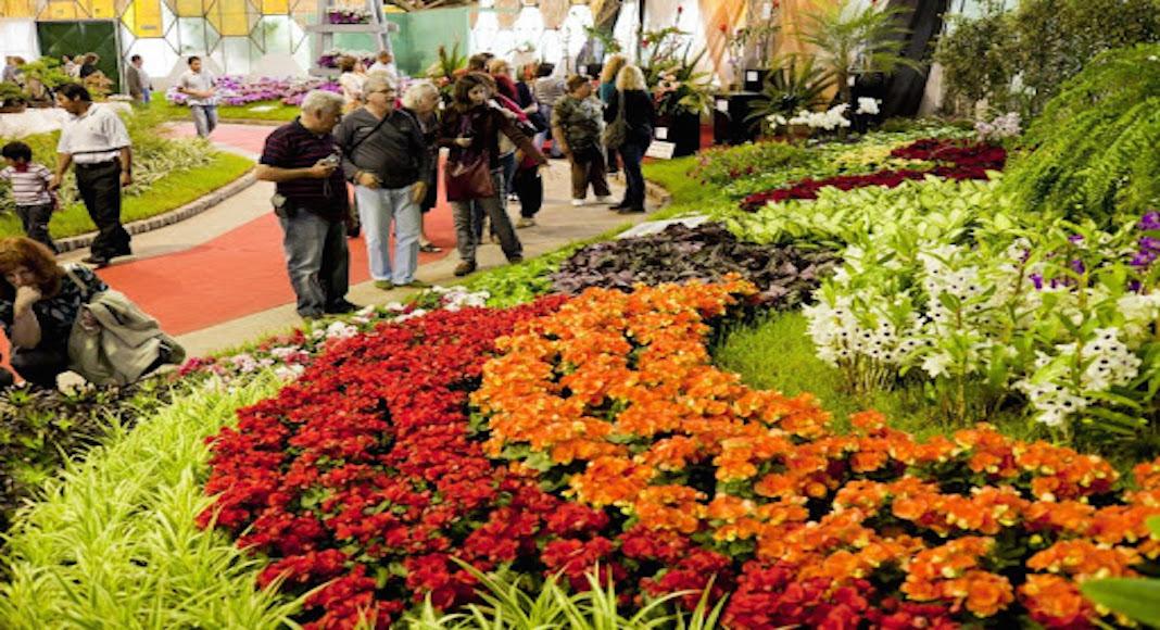 Fiesta de la Flor en Escobar