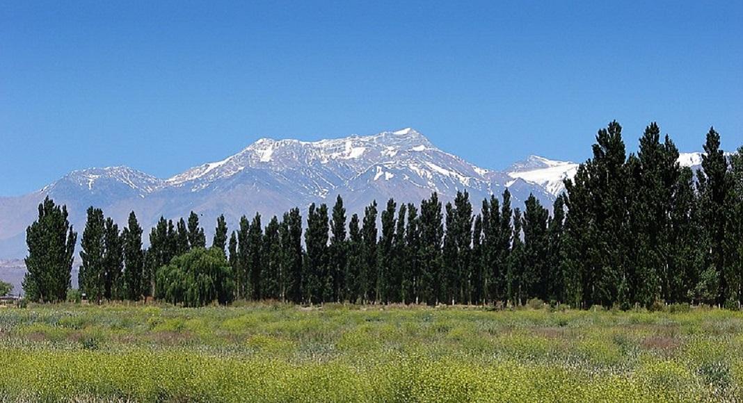 Árboles con montañas de fondo en Barreal