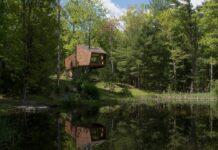 Willow Treehouse en New York