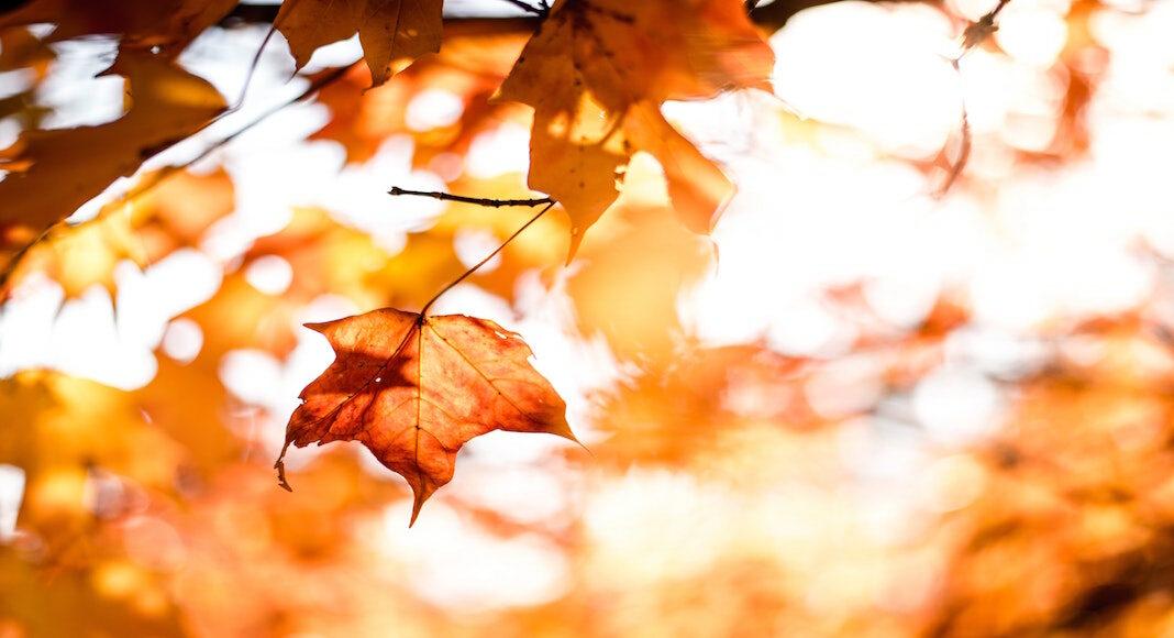 destinos para disfrutar el otoño en Argentina